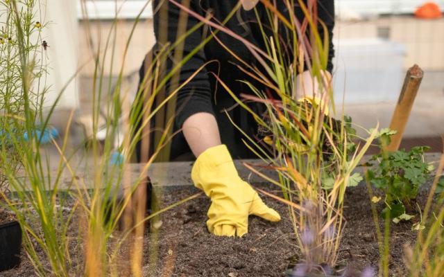 Workshop se zahradními architekty / Workshop with garden architects